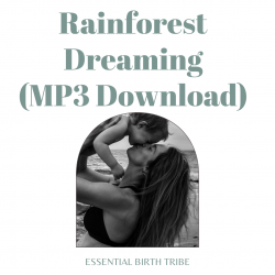 Rainforest Dreaming MP3 Download